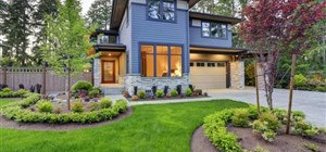 Planting Trees Near Your Driveway