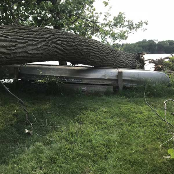 fallen tree on top of a canoe